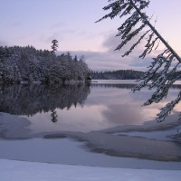 Winter at Lowell Lake